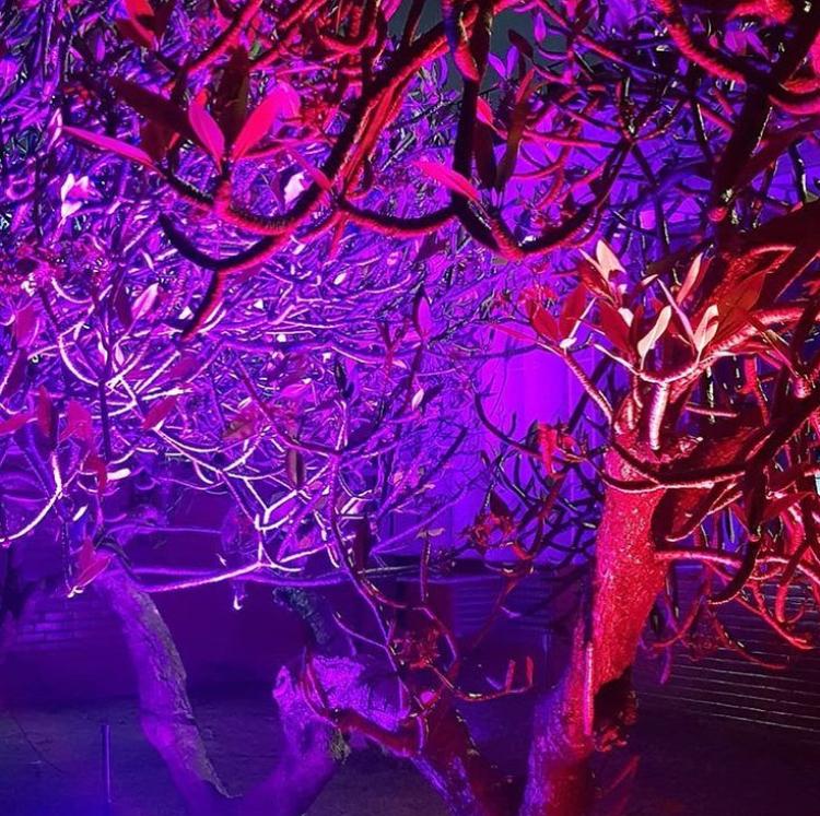 CasaCor Ceará | Projetores Embutidos de Solo LED 9W RGB